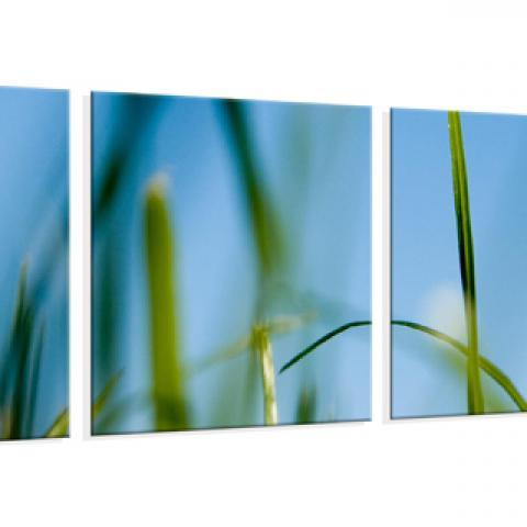 Foto op canvas bij fotocadeau - Hang een doek ...